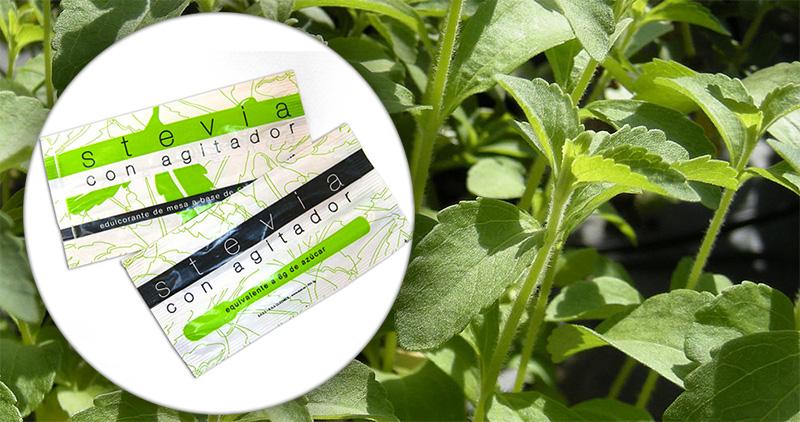 Stevia, edulcorante natural